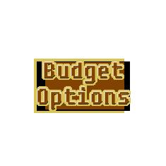 Budget Options