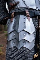 Dreki Belt Shields